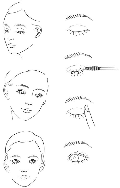 線画の女性顔と瞳のメイクイラスト