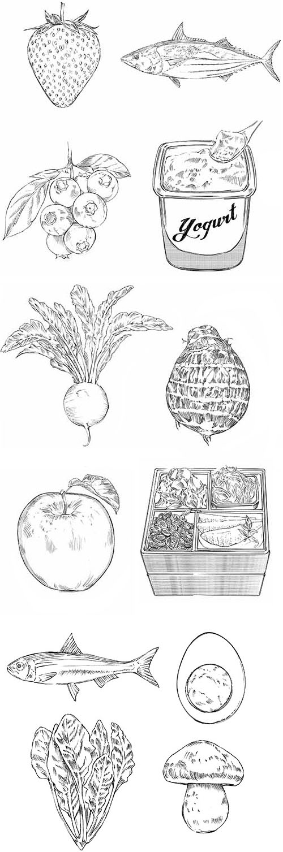 苺と魚とブルーベリーとヨーグルトとかぶと山芋とりんごとおせちと茹で卵とほうれん草ときのこの鉛筆で描いたイラストです。