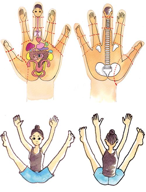 手と全身を示すイラスト
