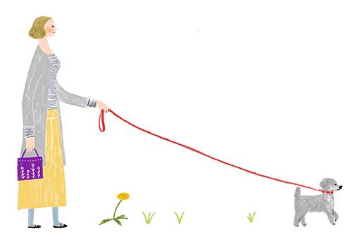 犬の散歩する女性