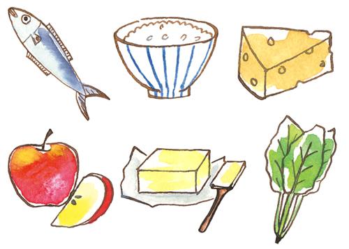 ご飯や魚、野菜等