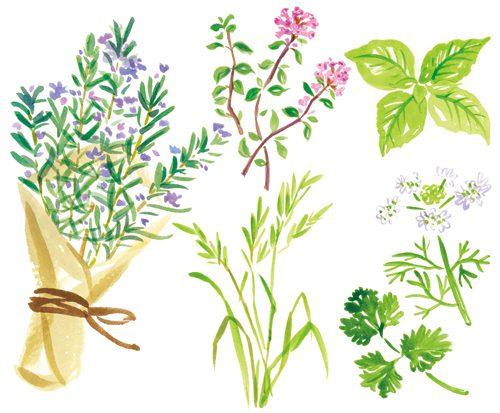 花束とハーブ