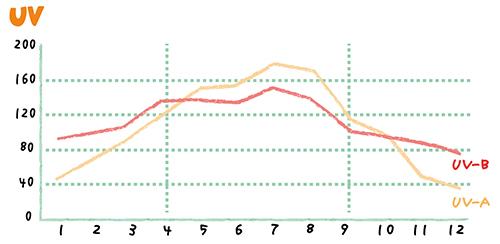 紫外線のグラフ