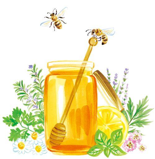 蜂蜜とハーブ