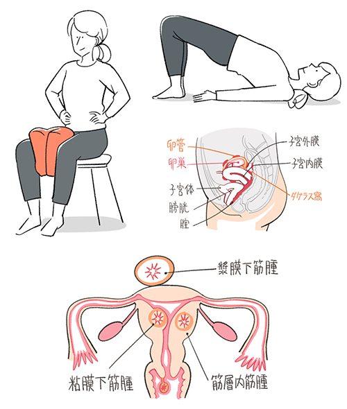 体操している女性と子宮のイラスト