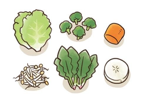 ほうれん草や白菜、人参、大根などの野菜のイラスト