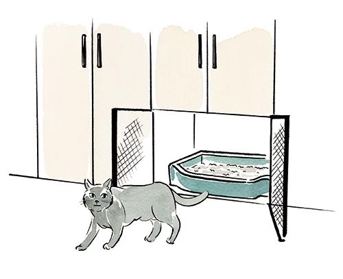 猫と猫のトイレ