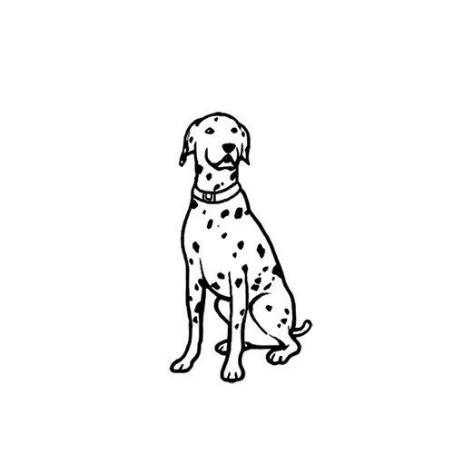 犬の線画イラスト