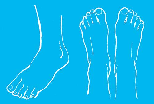 足の線画イラスト