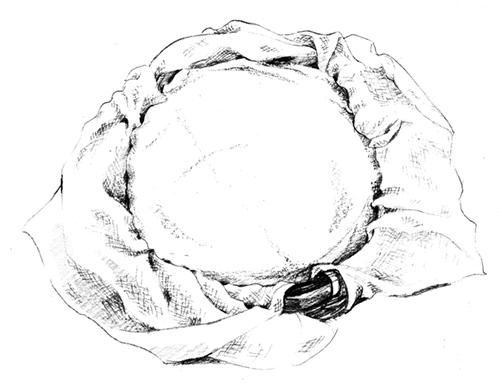 リアルなえんぴつタッチで描いた食材のイラスト